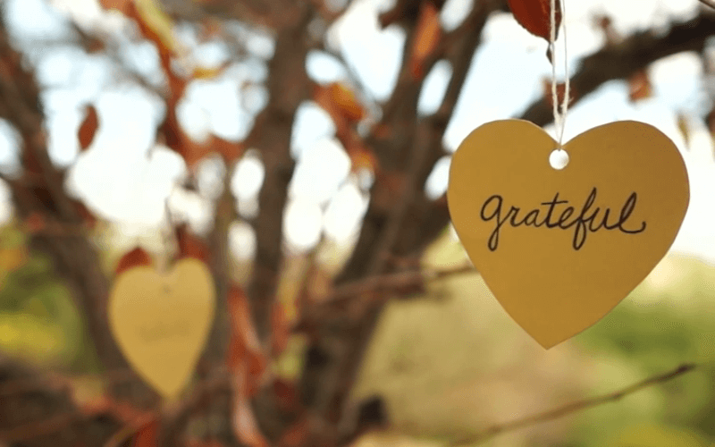 Grateful: A Long Song To The World